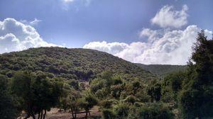 Final Hike